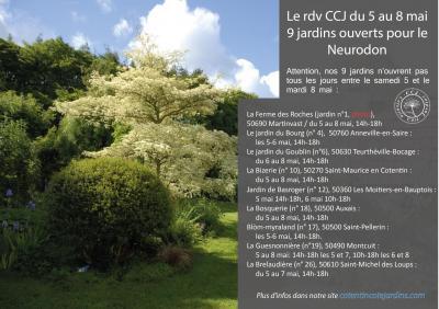 A4 neurodon